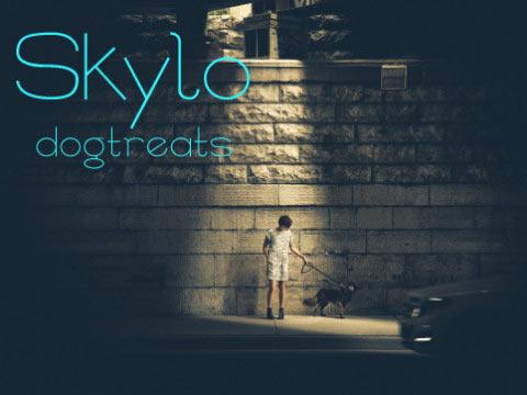 Skylo Web Designer